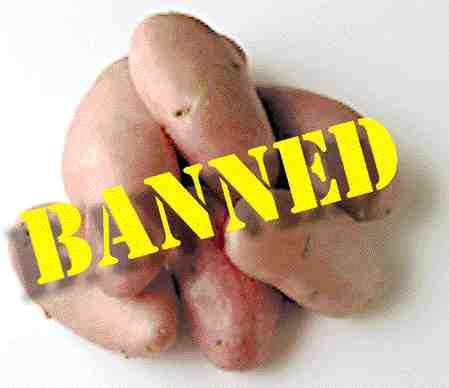 SPUDS AREN'T DUDS: U.S. overproduction, not fungus, is behind ban on P.E.I. potatoes.