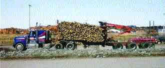 ROUGH AND READY: Slowing down log trucks might prolong equipment life.