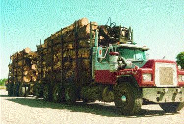 LUMBER: B.C. and Alberta widlfires are just one more headache for haulers.
