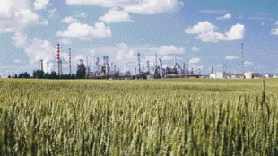 PRAIRIE GOLD: Petro-Canada has invested about $1.25 billion in its Western Canadian operations to accommodate production of Ultra Low-Sulfur Diesel, much of which will be produced here at its Edmonton refinery.