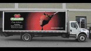 ADVERTISING ON WHEELS: Truck boxes can serve as rolling billboards rather than blank sidewalls.