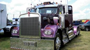 THE POWER OF PURPLE: Stan Kamulecks' 1981 Kenworth W900 took home a pair of first place trophies in the Best Vintage Highway Tractor - Pre-1986 and Best Professional Show/Flagship Truck categories.