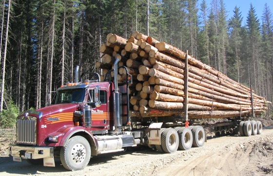 Pineview's Kenworth tri-drives allow the company to extend the log hauling season in B.C.