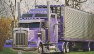 CULTURED TRUCK: This Kenworth W900L is now being showcased in France, where it's creating a lot of interest.