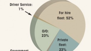 Distribution by Employer Type