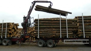 The Sundbergs drivers are very skilled, unloading about 40 tonnes of logs in less than 10 minutes.