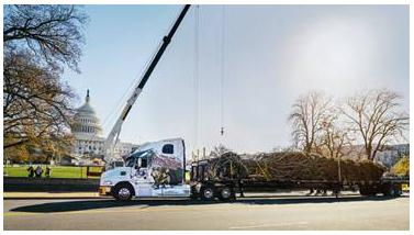 A Mack Pinnacle delivers the 73-foot Christmas tree to the US Capitol after more than 5,300 miles of travel from Colorado's White River National Forest.