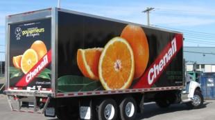 Straight Truck - Chenail