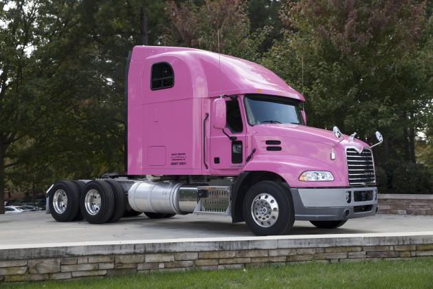 PinkMackPinnacle