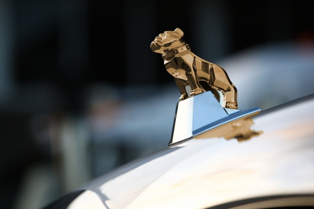 The gold bulldog symbolizes an all-Mack powertrain.