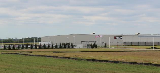 YTMM Plant w flags