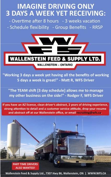 Wallenstein Feed