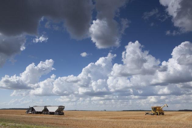 Biodiesel Manitoba