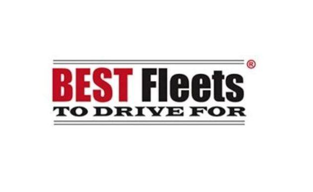 Best Flees