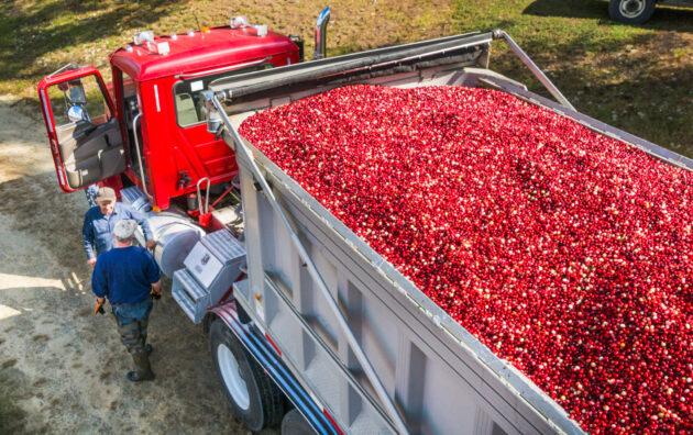 produce hauler